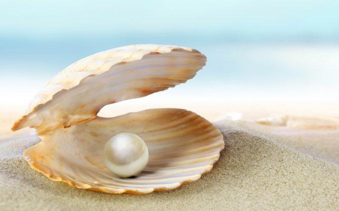 Oyester Pearl