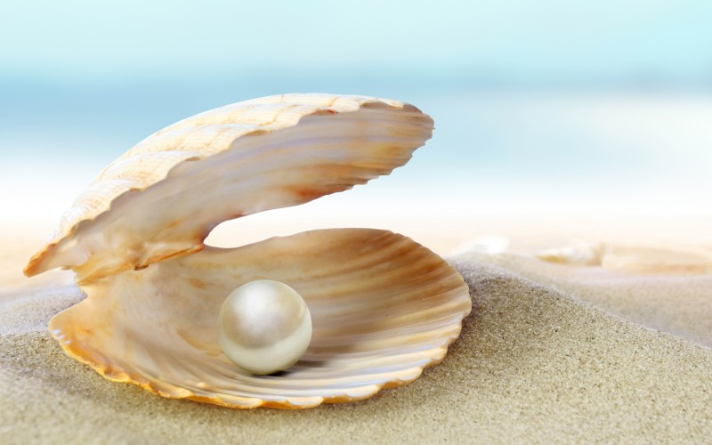 Pearl Cultivation from Marine Water Oyester Pearl