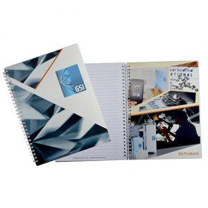 GSI Diary