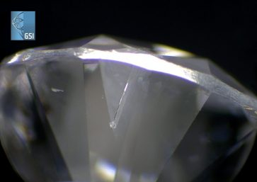 Observed Lab Grown Diamonds While Examining Diamonds